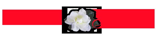 Floraria Gardenia